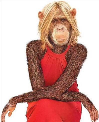 SORTEO DE GRUPOS REALIZADO Monkey-girl
