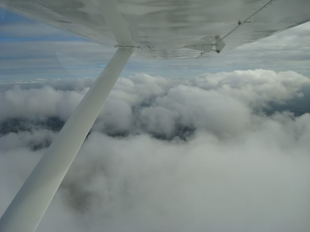 Voando Pelican Novamente  DSC07980