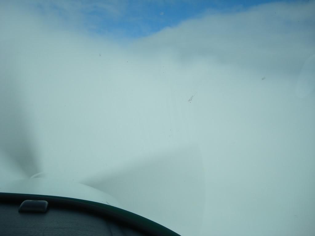 Voando Pelican Novamente  DSC07984