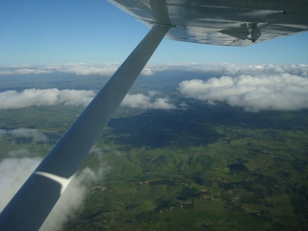Voando Pelican Novamente  DSC08007