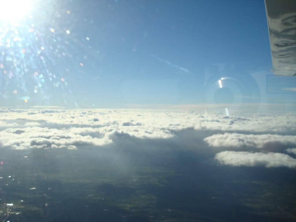 Voando Pelican Novamente  DSC08027
