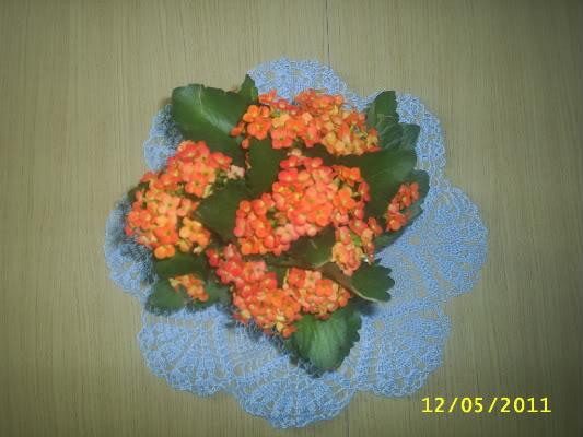 shop gio xach cua Hana - Page 8 S4010787-1