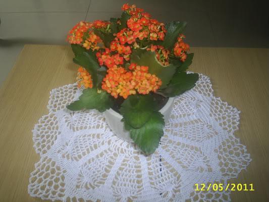 shop gio xach cua Hana - Page 8 S4010789-1