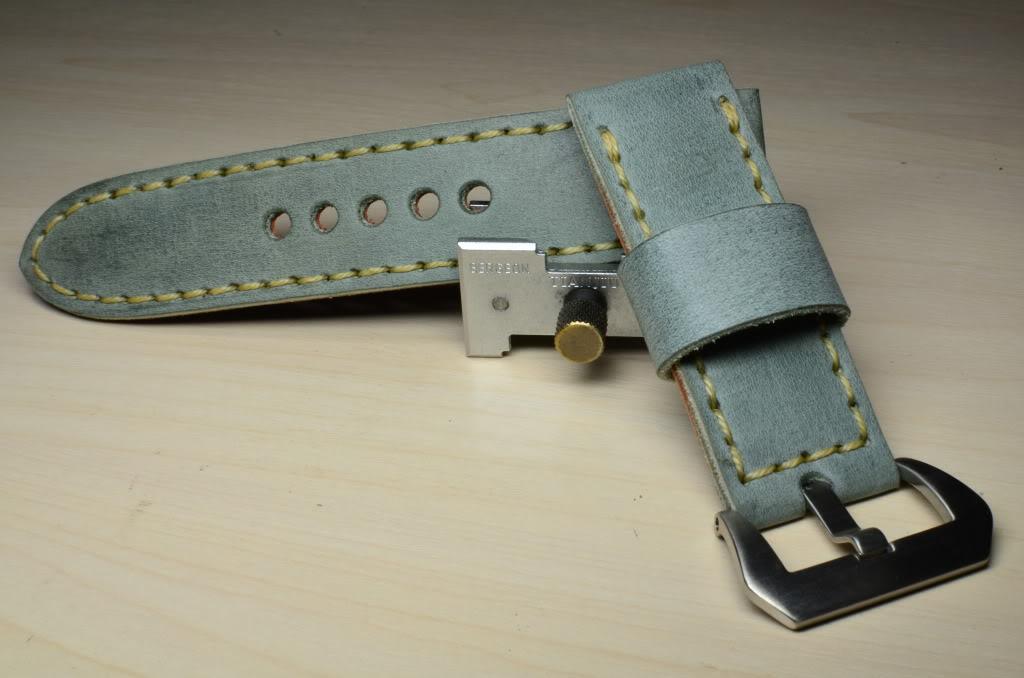 FS :24/24 mm straps. Vintage series DSC_0119-1