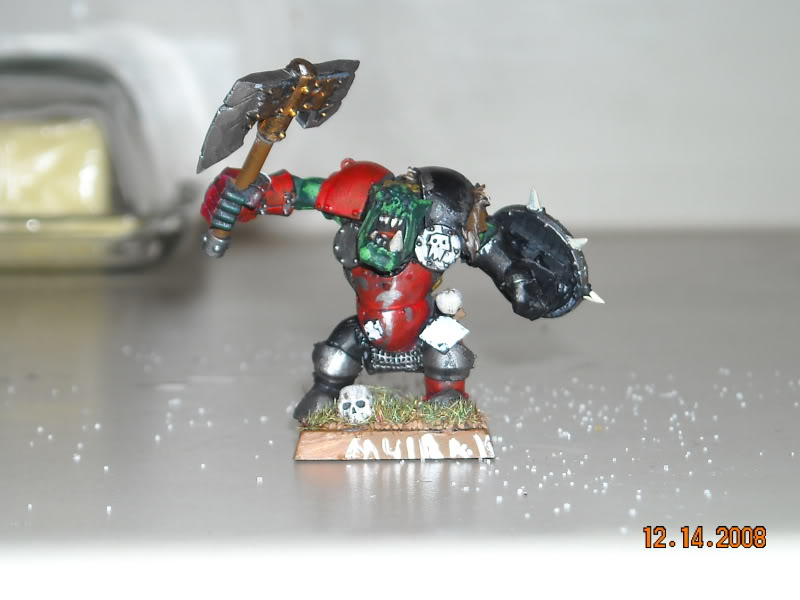 The WAAGH against Mordheim has been called! DSCN0144
