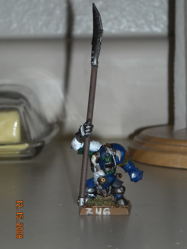 The WAAGH against Mordheim has been called! DSCN0146