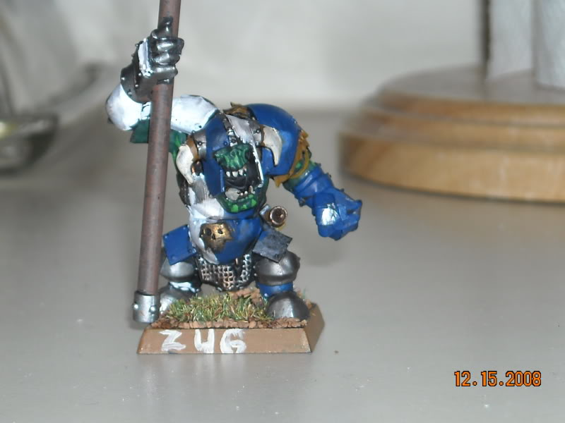 The WAAGH against Mordheim has been called! DSCN0147