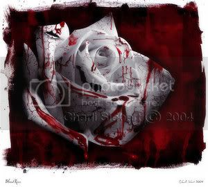 HAPPY VALENTINES DAY!!! - Page 2 Blood_roses_by_pharie82