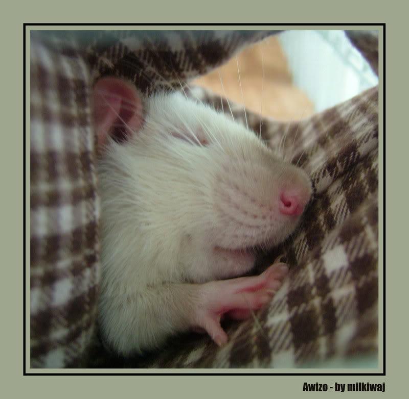 Slikice :) Sleeping_beautty_by_milkiwaj