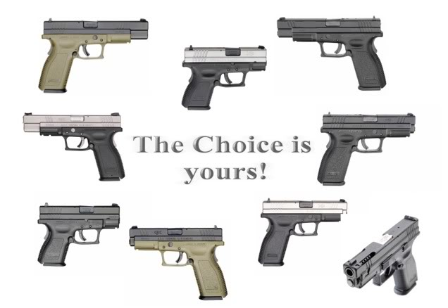 Croatian Defence Industry Choice