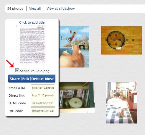 Tutorial Photobucket ~ Como crear los thumbnails Tutopb02