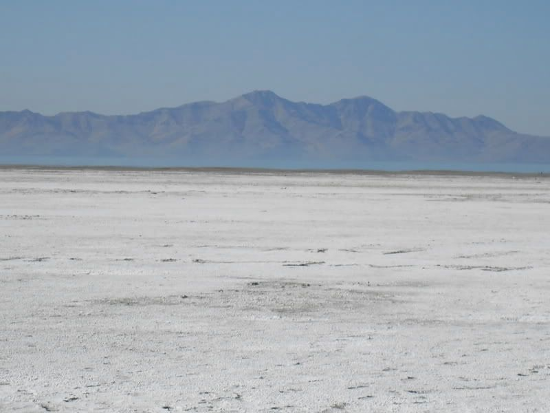 Pictures from the Great Salt Lake itself SDC10211