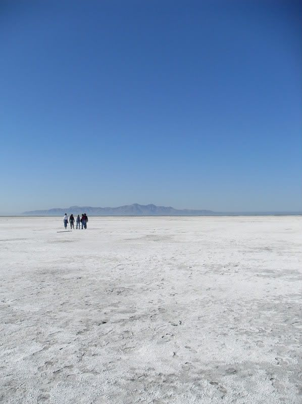 Pictures from the Great Salt Lake itself SDC10214