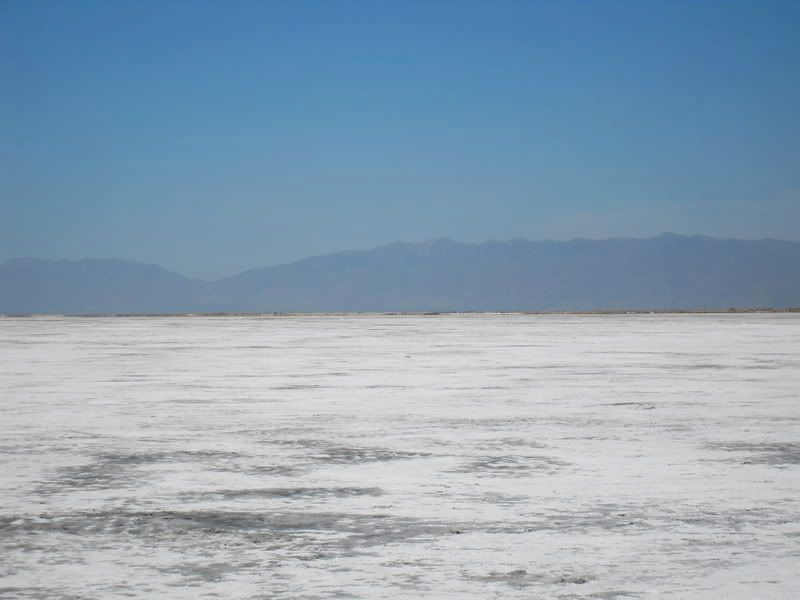 Pictures from the Great Salt Lake itself SDC10216