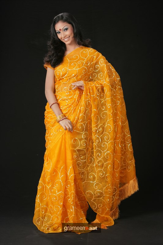 Indian Women in Beautiful Saree India4