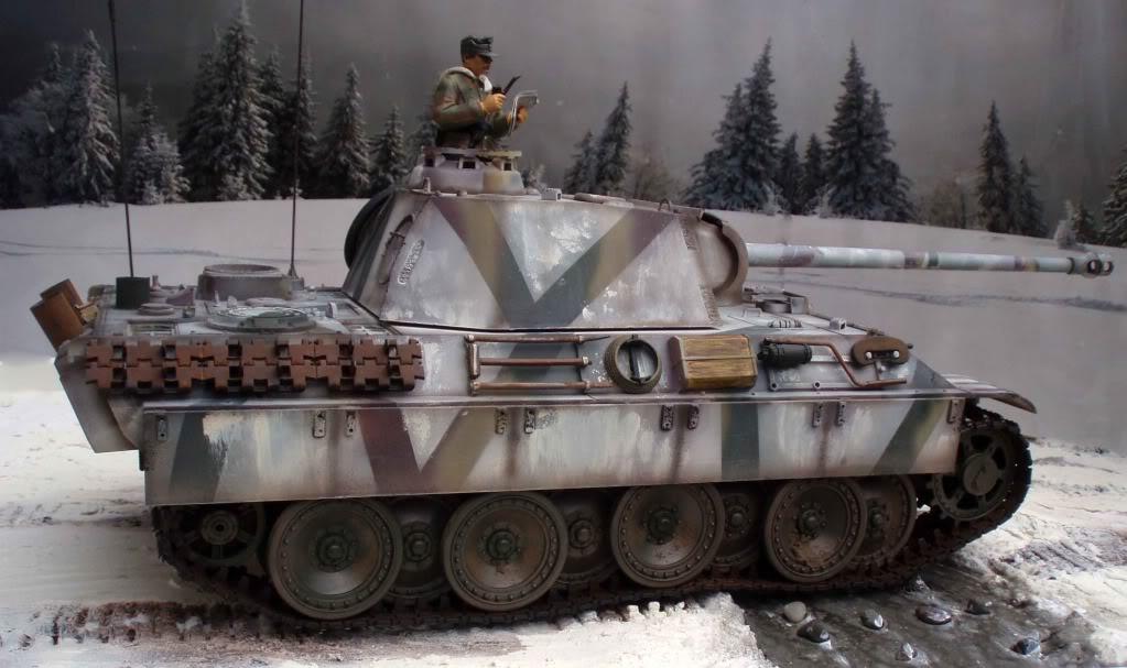 Wintertarnung Panther Panther11