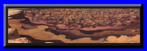 Foro gratis : Shinobi Wars Desierto