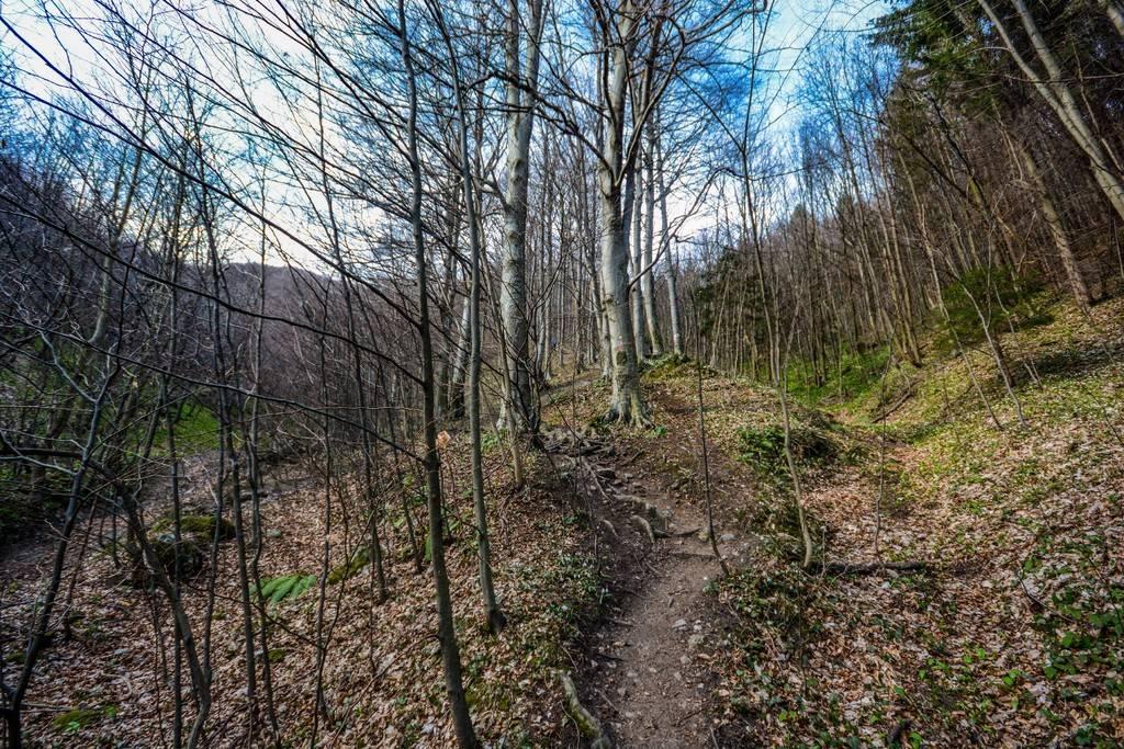 Day hike - Ivanščica DSC_0756_zpsbaanx96z