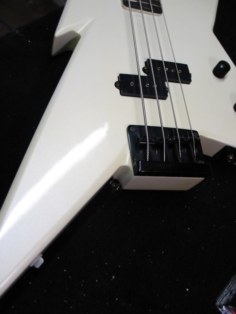 NEED HELP WITH MY DREAM BASS!!!! IMG_4521