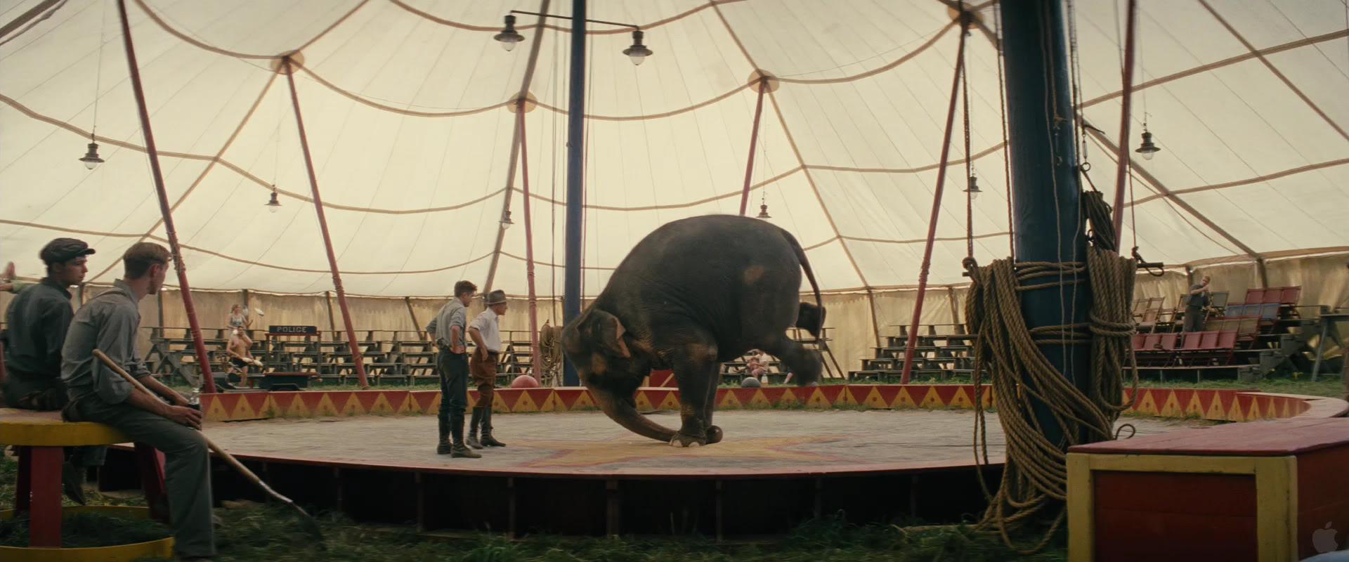 Still Water for Elephants... Pattinsonlife1045