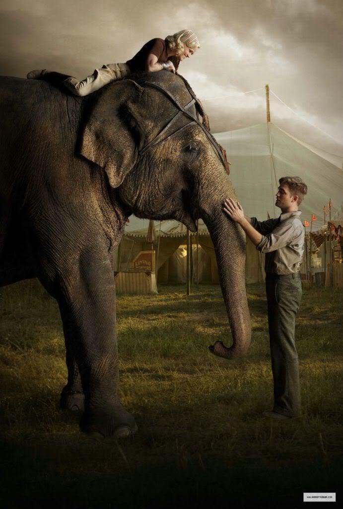 Still Water for Elephants... - Page 4 StillsWFE