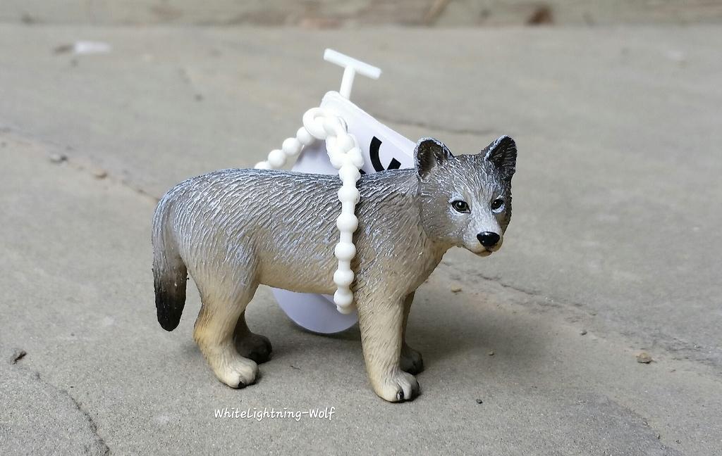 2016 Mojo Fun Wolf Pup Walkaround  2016-06-13%2010.20.10_zpsq4icgaqn