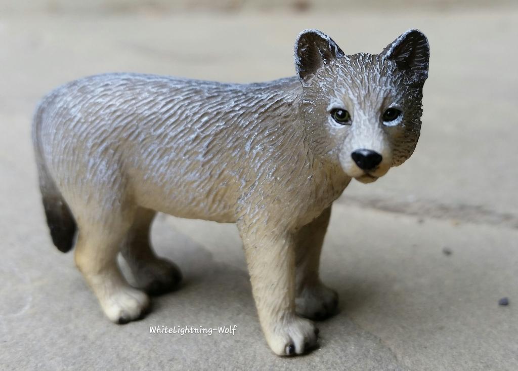 2016 Mojo Fun Wolf Pup Walkaround  2016-06-13%2010.25.13_zpsaeyizbqk