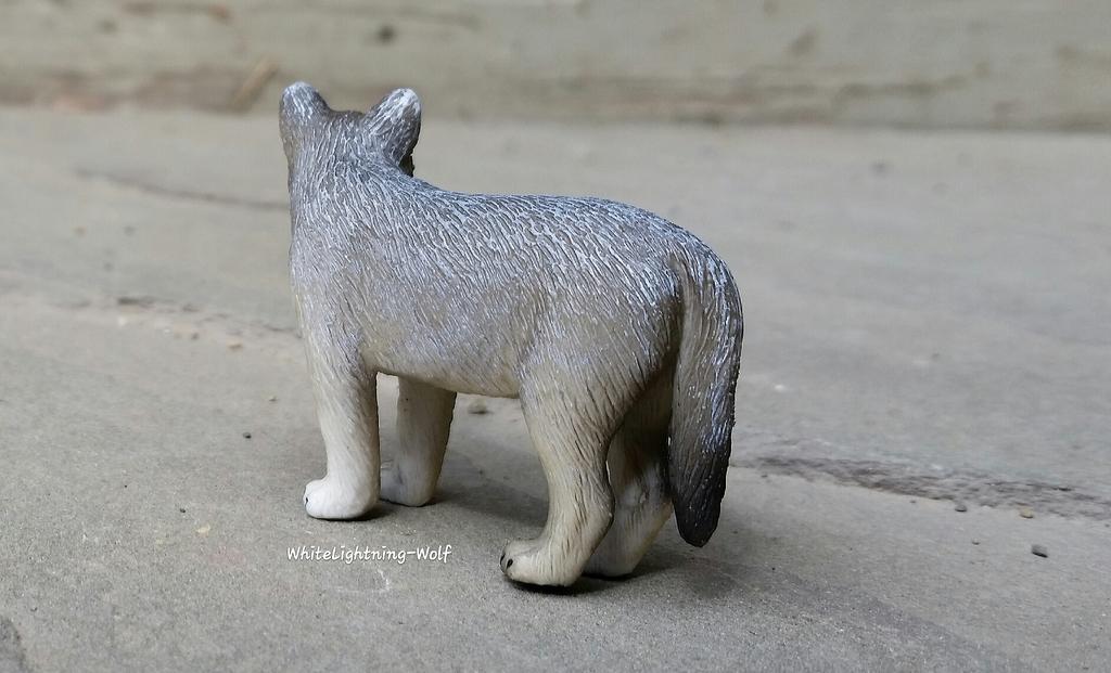 2016 Mojo Fun Wolf Pup Walkaround  2016-06-13%2010.26.51_zpsisskkmbv