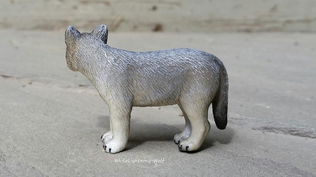 2016 Mojo Fun Wolf Pup Walkaround  2016-06-13%2010.27.22_zpsj9reen3d
