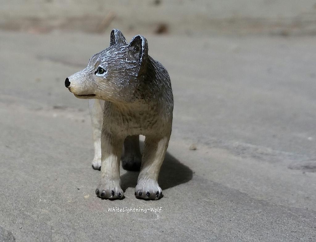 2016 Mojo Fun Wolf Pup Walkaround  2016-06-13%2010.28.26_zpsycl3ells