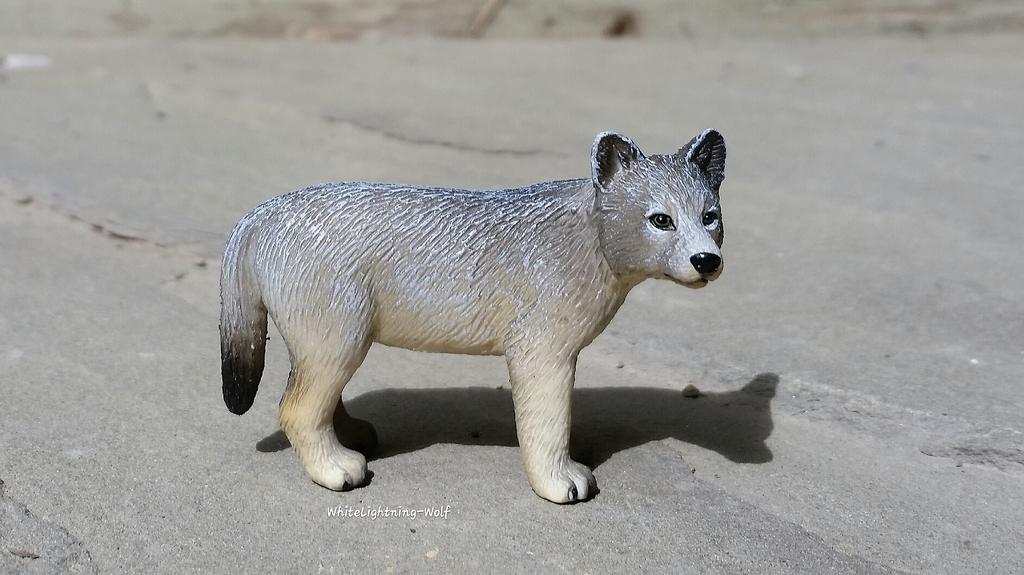 2016 Mojo Fun Wolf Pup Walkaround  2016-06-13%2010.29.32_zpsngzn2ykx