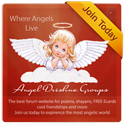 Angel Drishne Groups