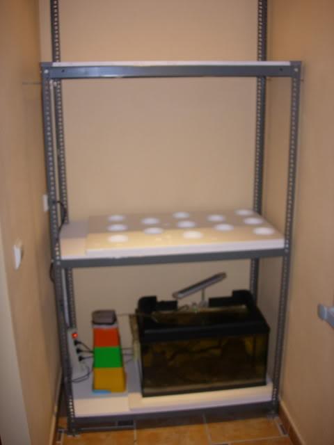 Proyecto bateria de acuarios DSCN4493