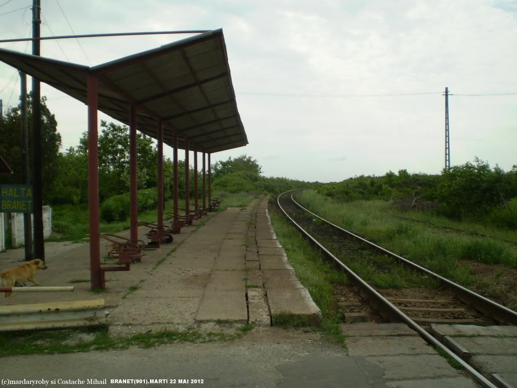 901 : Bucuresti Nord - Titu - Pitesti - Piatra Olt - Craiova - Pagina 3 P1010062-2
