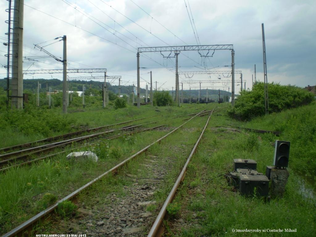914 : Strehaia - Motru Hm. - Pagina 3 P1010148-1