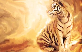 Battle of the tiger! Efs