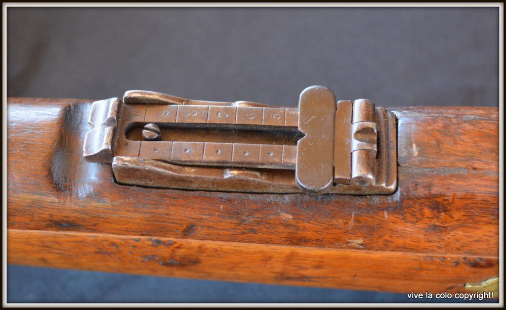 hausse fusil Gras DSC_0361