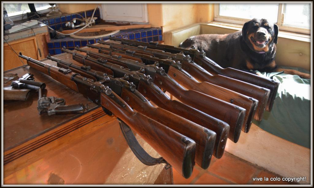 Que pensez vous de ce R35 et sa baionette ????? - Page 3 DSC_0069_1