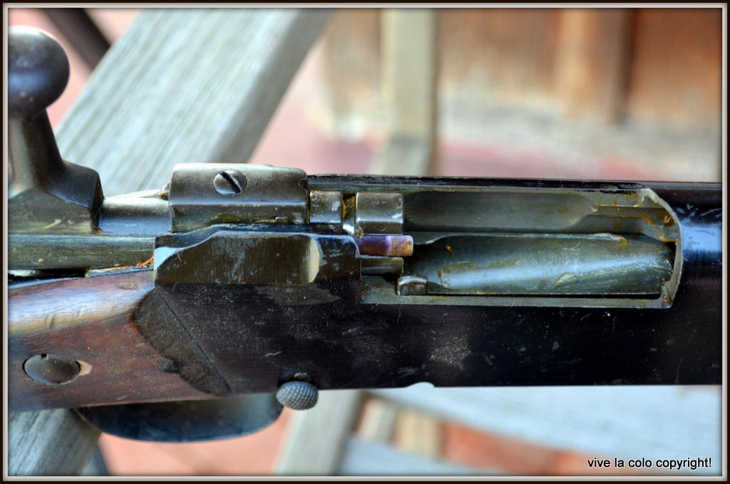 Que pensez vous de ce R35 et sa baionette ????? - Page 3 DSC_0079_1
