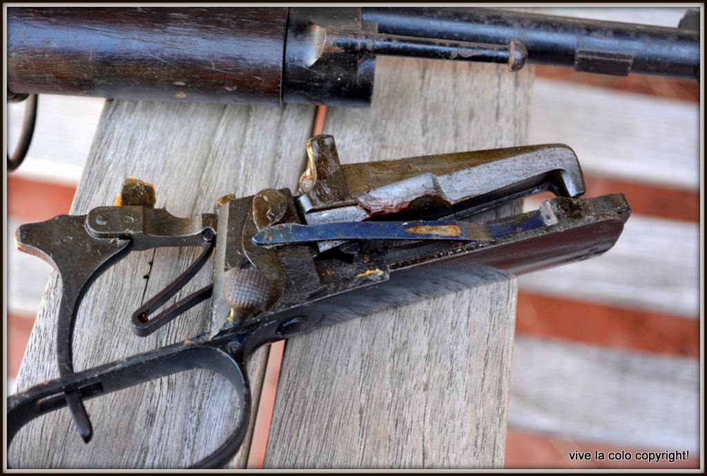 Que pensez vous de ce R35 et sa baionette ????? - Page 3 DSC_0085