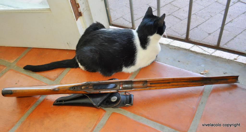 Carabine modèle 1916 DSC_0200