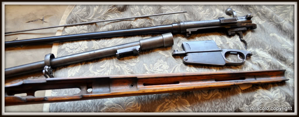 Carabine modèle 1916 DSC_0206