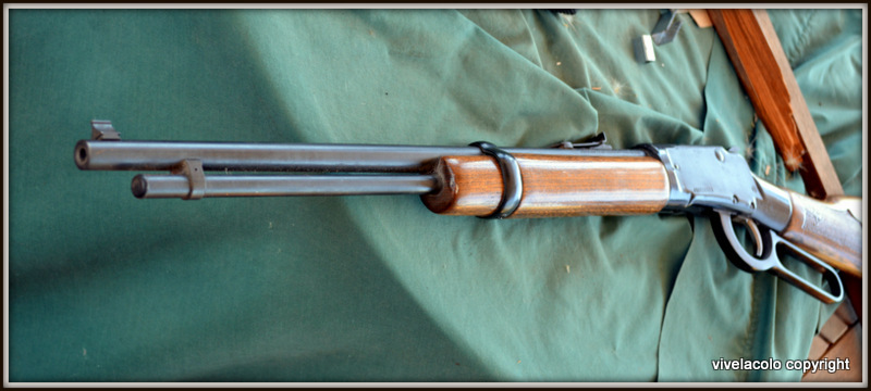 La meilleure carabine a levier sous garde DSC_0519_1