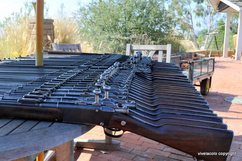 24  fusils qui venaient de Kaboul. DSC_0727-2