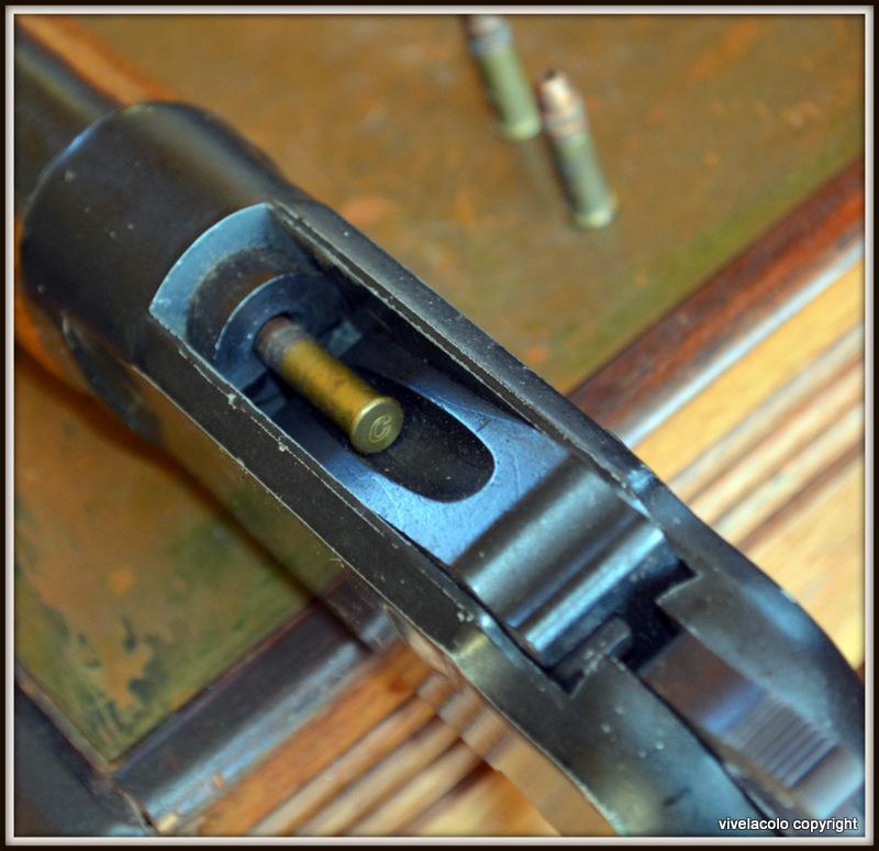 La meilleure carabine a levier sous garde DSC_0865
