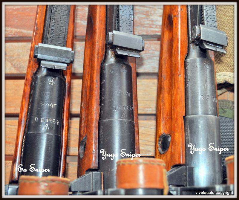 Mosin Nagant/Sniper Ramassis d'elucubrations DSC_0026