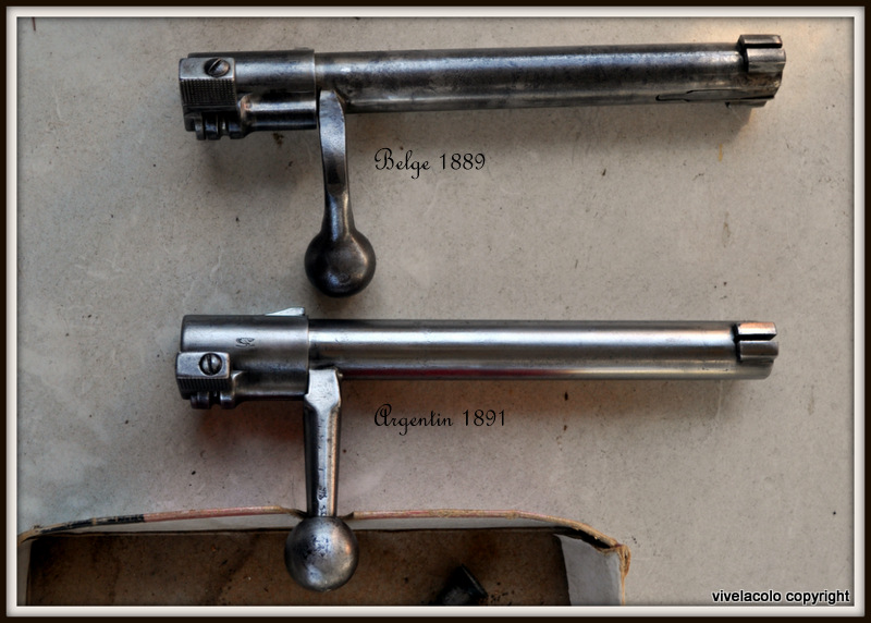 Fusil Argentin 1891 DSC_0558