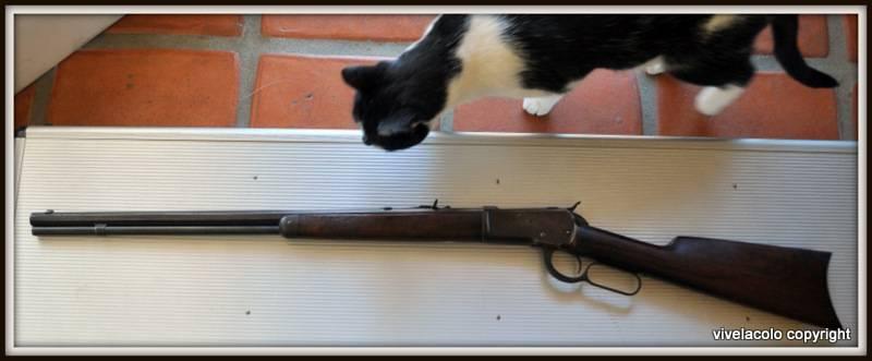 "Winchester 1892 ""Carbine"" - Page 2 DSC_0735"