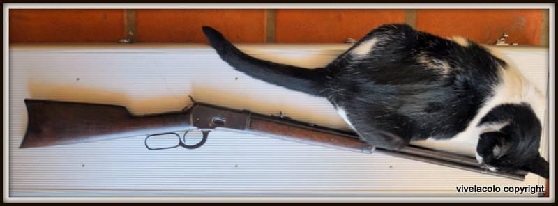 "Winchester 1892 ""Carbine"" - Page 2 DSC_0744"