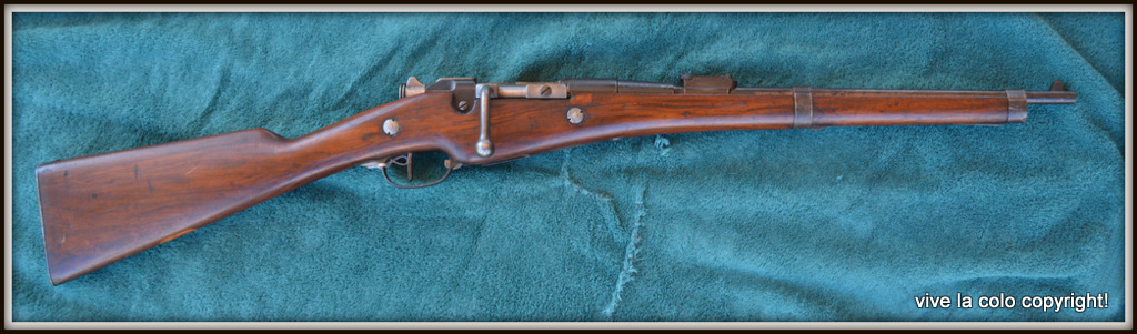 Carabine Berthier 1890 DSC_0044